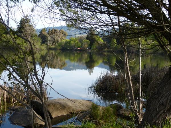 Sonoma County Spring Lake1030465
