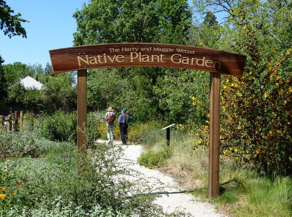 Healdsbuurg Native Plant Garden