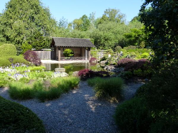 Garden of tranquility (Phto: i