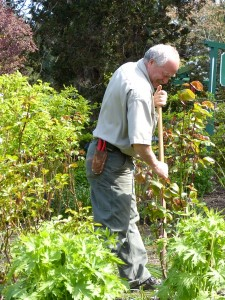 Fifty full-time gardeners and 12 part-time keep the gardens in order