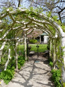 Arbors and handrails, crafted from cement, are dead-ringers for natural branches.