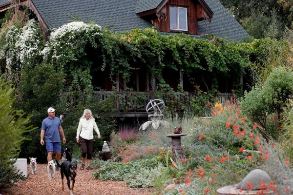 Kate Frey and husband Ben Frey stroll in their verdant garden, which emphasizes sustainable, organic and habitat features.