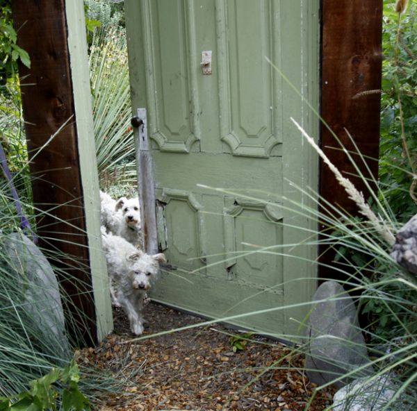 Family dogs walk through a Victorian-era door, one of Ben Frey's recycled finds, that opens into the vegetable garden.